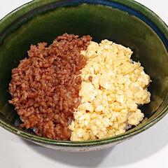 三井製糖/スプーン印 上白糖 1kg×20袋(上白糖)を使ったクチコミ「晩御飯は二色丼  夕方から息子が熱中症に…」