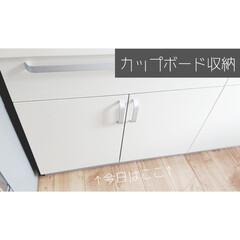 キッチン小物/生活の知恵/キッチン/お椀/食器/食器収納/... 【カップボード収納】 ここは食器を収納し…