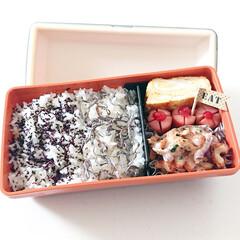 ヤマキ 割烹白だし / ヤマキ(めんつゆ、そばつゆ)を使ったクチコミ「今日のお弁当 お買い物していなかったので…」