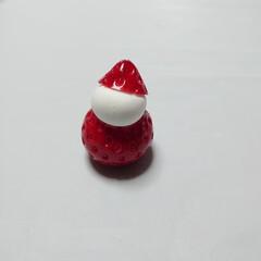 クリスマス粘土教室/ねんどぶ/手作り/フェイクスイーツ作家ねんどぶ/粘土雑貨/可愛い雑貨ねんどぶ/... クリスマスの教室のサンプルを制作中です。…(1枚目)