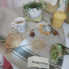 キッチン/フェイクフラワー/ココナツの実 ドライフラワー/キャニスター/洋書/観葉植物/... 楽天でポチリした、 とりの型のコースター…(1枚目)