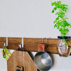 カフェ板/定規/観葉植物のある暮らし/すのこリメイク/ローテーブル/スマホスピーカー/... 最近の簡単DIy✨を載せておきます。 暇…(2枚目)