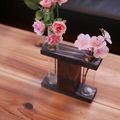 カフェ板/定規/観葉植物のある暮らし/すのこリメイク/ローテーブル/スマホスピーカー/... 最近の簡単DIy✨を載せておきます。 暇…(5枚目)