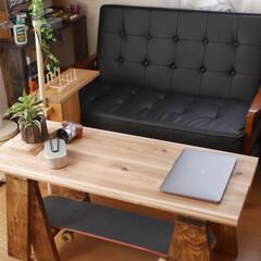 カフェ板/定規/観葉植物のある暮らし/すのこリメイク/ローテーブル/スマホスピーカー/... 最近の簡単DIy✨を載せておきます。 暇…(7枚目)