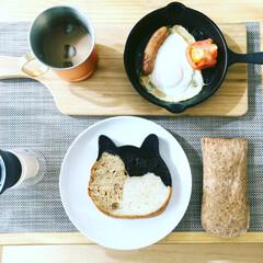 朝ごはん/鍋敷/男前/カフェ風 朝ごはんっ!🐱🍳☕️  天気も良し!  …(1枚目)