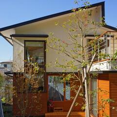 パッシブソーラー/木製サイディング 屋根は、屋根面で熱を集めて暖房を行うパッ…