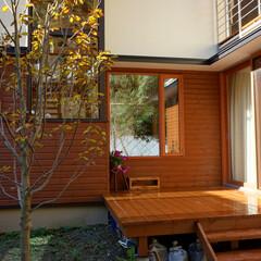 サーモウッド/デッキ/木製サッシ 外壁とデッキは、フィンランドで開発された…