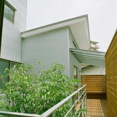 空中回廊/庭・ガーデニングリフォーム/デッキ材 2階レベルには空中回廊が回って、燐家から…