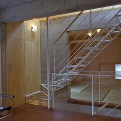 階段/トップライト 3階建ての住宅の中心にある階段を細い鉄骨…