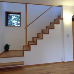 階段 フローリングと同じオークの集成材で作った…