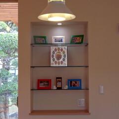 飾り棚 壁のニッチにガラスの棚と照明を仕込んで飾…